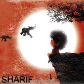 Sobre Los Márgenes di Sharif