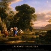Albinoni: Adagio in G Minor - Vivaldi: The Four Seasons - Pachelbel: Canon in D Major - Bach: Air On the G String - Mendelssohn: Wedding March - Schubert: Ave Maria - Mozart: Turkish March - Beethoven: Moonlight Sonata - Chopin: Waltzes & Impromptu by Various Artists
