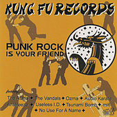 Punk Rock Is Your Friend by Various Artists