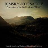 Rimsky-Korsakov: Procession of the Nobles from