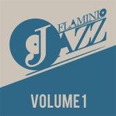Flaminio Jazz, Vol. 1 (Jazz, Nu-jazz, Acid Jazz) by Various Artists