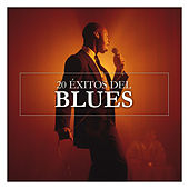 20 Éxitos del Blues von Various Artists