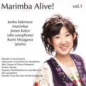 Miyoshi - Mayuzumi - Abe - Tanner - Dvorak: Marimba Alive! Vol.1 von Various Artists