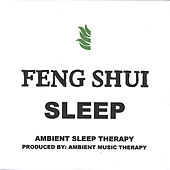 Feng Shui Sleep (Import) - By: Ambient Music Therapy by Ambient Sleep Therapy