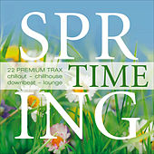 Spring Time - 22 Premium Trax...Chillout, Chillhouse, Downbeat von Various Artists