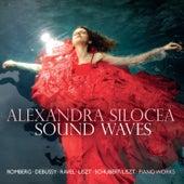 Sound Waves by Alexandra Silocea