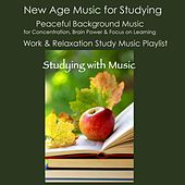 Studying with Music: New Age Music for Studying, Peaceful Background Music for Concentration, Brain Power & Focus On Learning, Work & Relaxation Study Music Playlist de Studying Music Artist