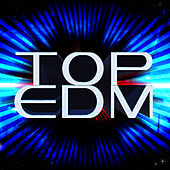 Top EDM de Various Artists