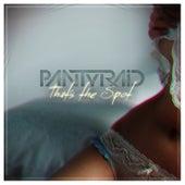That's the Spot - Single by Panty Raid