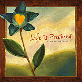 Life Is Precious: A Wes King Tribute de Various Artists