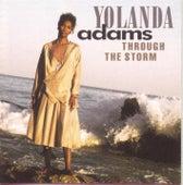 Through The Storm de Yolanda Adams