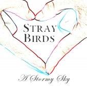 A Stormy Sky by Stray Birds