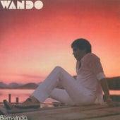 Bem Vindo de Wando