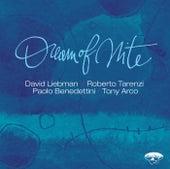 Dream of Nite di David Liebman