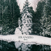 Strangers de Feist