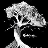 Walking with the Forgotten by Coldrain
