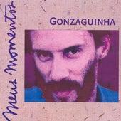 Meus Momentos by Gonzaguinha