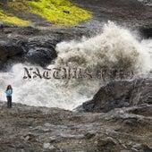 Náttúra (Switch Remix) by Björk
