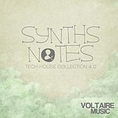 Synths and Notes 4.0 (Tech House Collection) de Various Artists