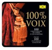 100 Pour 100 Voix - Les 100 Chefs-D'Oeuvre De L'Opéra Et De La Mélodie de Various Artists