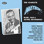 The Complete Meteor Blues, R&B and Gospel Recordings de Various Artists