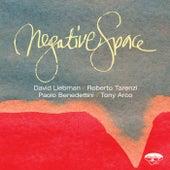 Negative Space di David Liebman