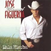 Mala Hierba by Jose Manuel Figueroa