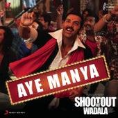 Aye Manya (Remix by Mayur Sahani) by Adnan Sami