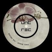 The Orchid de Paul Baker