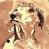 Did I Tell You de The Spinto Band