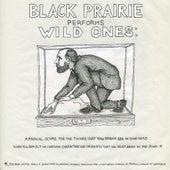 Wild Ones by Black Prairie