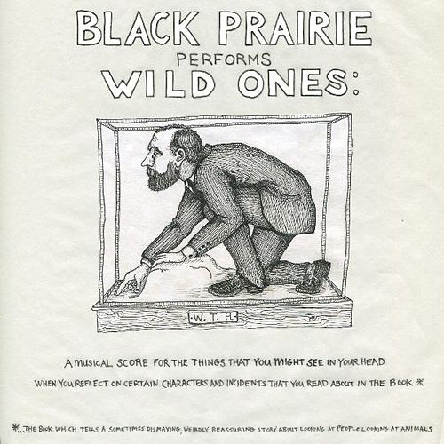 Wild Ones by Black Prairie