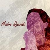 Madre Querida de Paulina Aguirre
