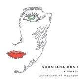 Shoshana Bush & Friends Live At Catalina Jazz Club by Shoshana Bush