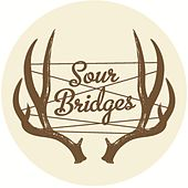 Workin' On Leavin' by Sour Bridges