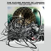 Teachings From The Electronic Brain von Future Sound of London