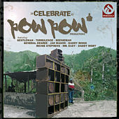 Celebrate von Various Artists
