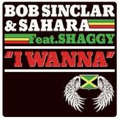 I wanna di Bob Sinclar