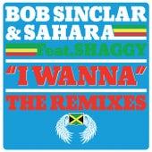 Bob Sinclar & Sahara feat. Shaggy / I Wanna - The Remixes di Bob Sinclar