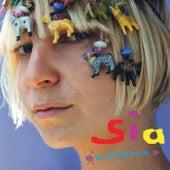 Academia (International) di Sia