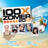 100x Zomer 2013 van Various Artists