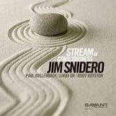 Stream of Consciousness von Jim Snidero