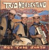 Nós Tudo Junto von Trio Nordestino