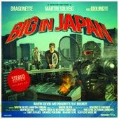 Big In Japan di Martin Solveig