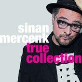 True Collection by Sinan Mercenk