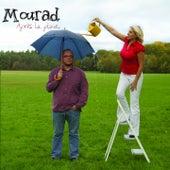 Après la pluie... von Mourad