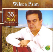 Wilson Paim - 35 Mega Sucessos de Various Artists