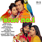 Biwi No. 1 (Original Motion Picture Soundtrack) by Various Artists