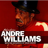 Aphrodisiac de Andre Williams