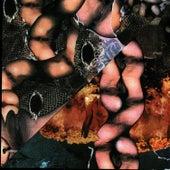 Origin Of The Species Volume Too! - Third Tablet Of Acid by Psychic TV